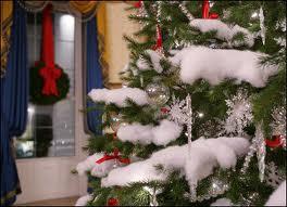 albero con neve