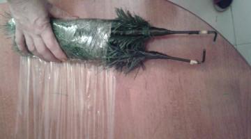 come-riporre-l'albero-di-natale-blog-miss-christmas-gatto (4)