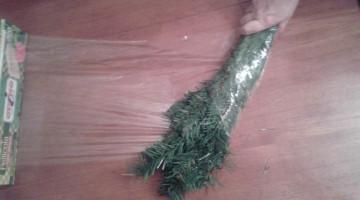come-riporre-l'albero-di-natale-blog-miss-christmas-gatto (7)