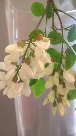 ricetta-babbo-natale-frittelle-fiori-di-acacia (5)