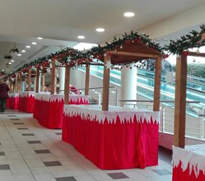 Christmas-Shopping-2